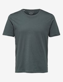 Slhthe Perfect Tee Ss  O-Neck